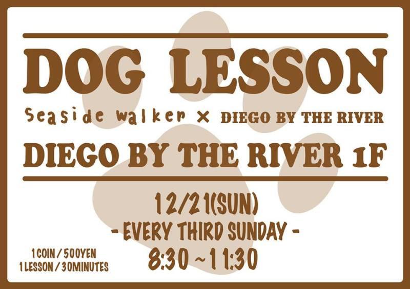 DOG lesson 420