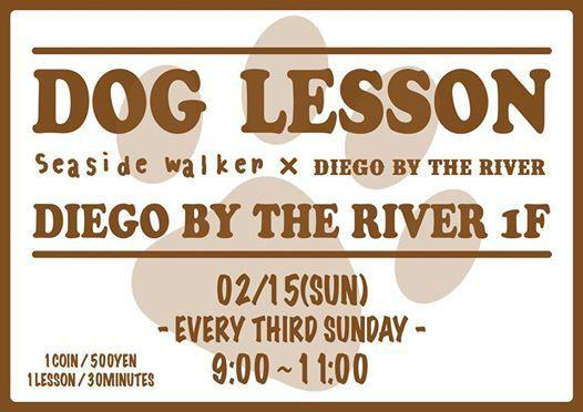 dog lesson 215